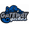 Gateway, Team S1-G6, Johnson Spring 2018 아바타
